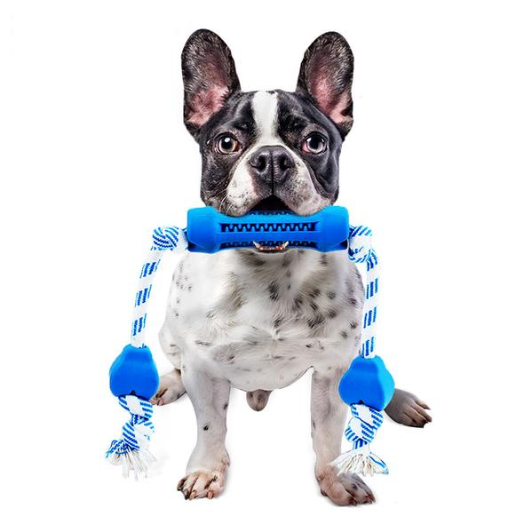 toys for french bulldog puppies