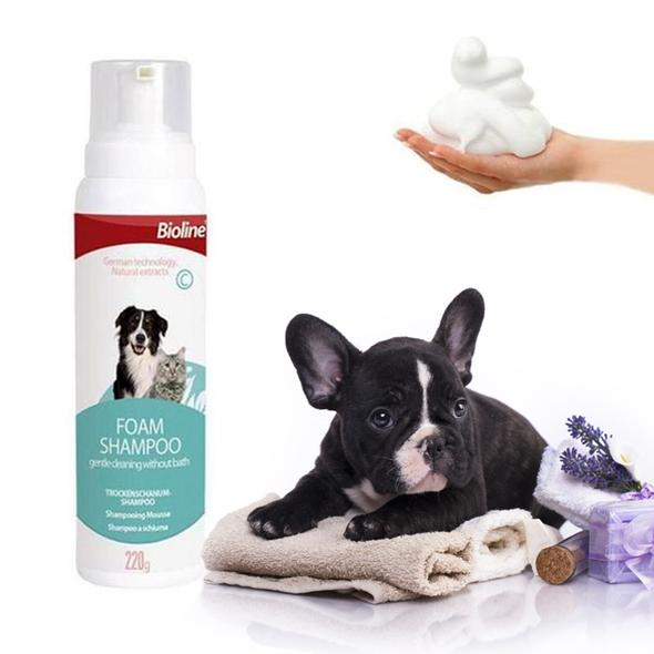 champu en seco para perros